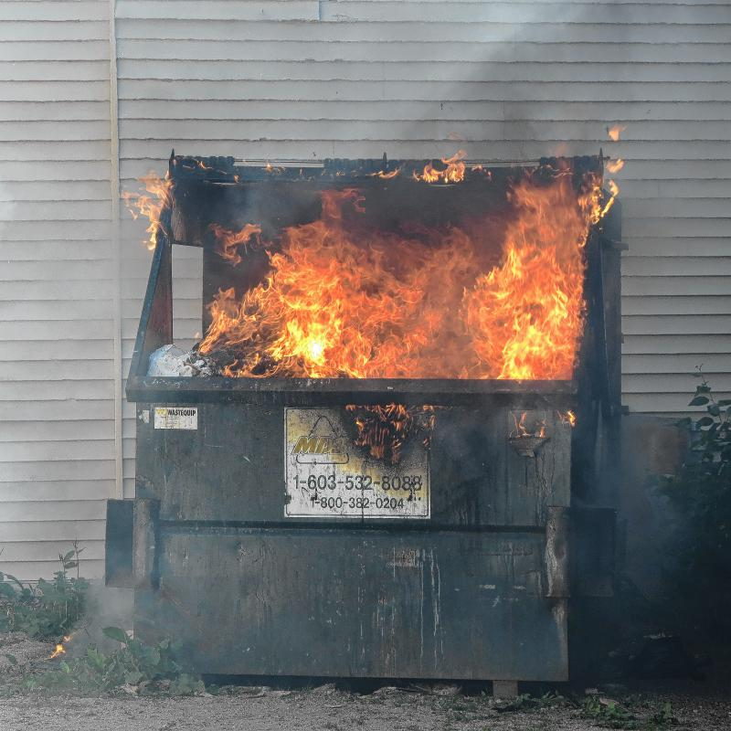 One of nature's marvels and the perfect cultural symbol of 2016: the beautiful and mysterious dumpster fire.